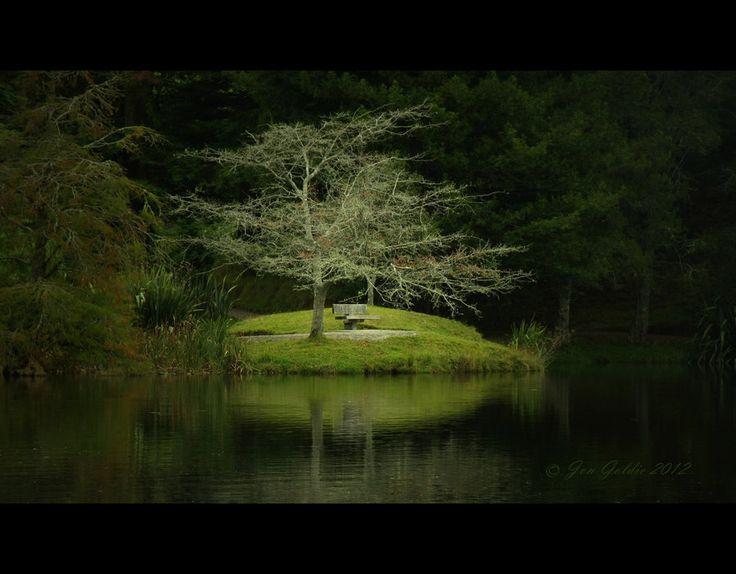 """""""Time Out"""" by Jongol on deviantART.  (McLaren Falls Lake, Tauranga,"""