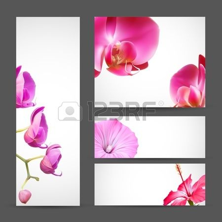 Flower brochure template. Orchid and Hibiscus Blossom