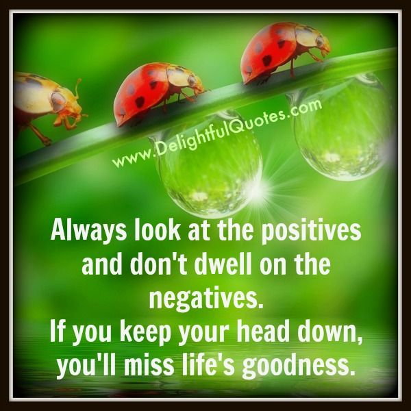 Always look at the #positives and don't #dwell on the #negatives. If you keep your head down, you'll miss #life's #goodness.