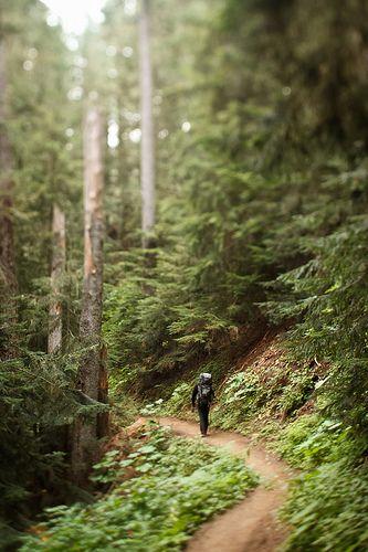 Cascade Mountains, Washington State