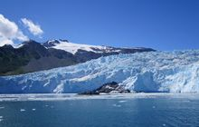 MEIER'S WELTREISEN - Reisetipp des Monats - Alaska - Gletscher im Kenai Fjords National Park