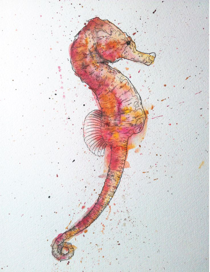Aside from turtle love, seahorses are next in line and the fact that this is watercolor just makes my boat float a little higher :)