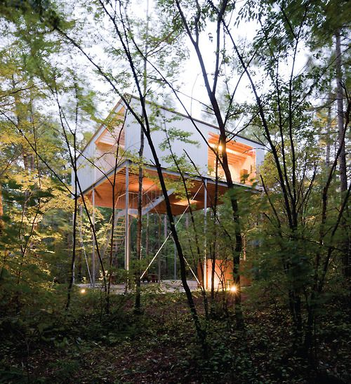 Go Hasegawa- House in a forest, Nagano 2006.Via, photos (C)...