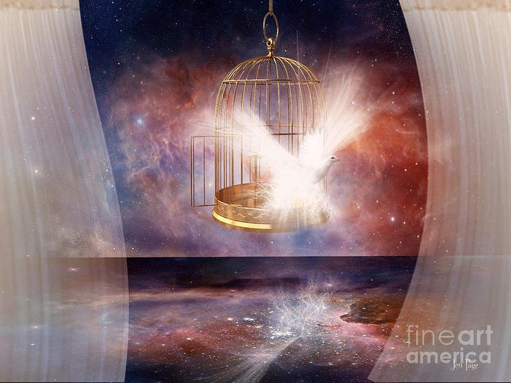 Image result for prophetic art He who the Son sets free is Free indeed