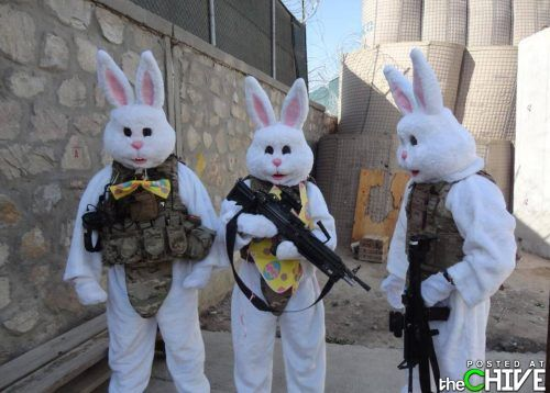 easter bunny funny pictures