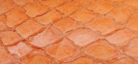 Peau de poisson amazone Terracotta - terra-cotta amazone fishskin  #orange #orangeclair #hellorange #Fichhaut #Inneneinrichtung #decoration #inspiration #coloridea #homedecoration www.norki-decoration.com