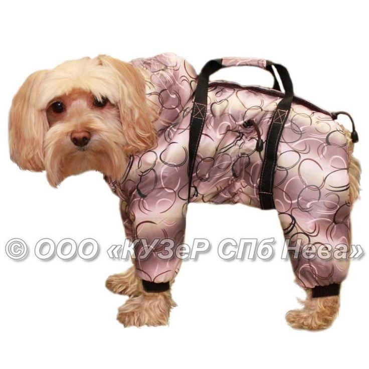Технокуртка для собаки-поводыря