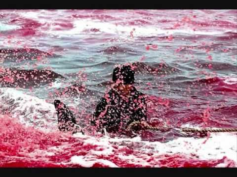 Dolphin Slaughter in Denmark. https://www.youtube.com/watch?v=bgUJQBCtHhg&oref=https%3A%2F%2Fwww.youtube.com%2Fwatch%3Fv%3DbgUJQBCtHhg&has_verified=1 #SeaShepherd #defendconserveprotect #grindstop