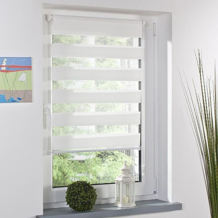Related Image Window Coverings Pinterest Shades