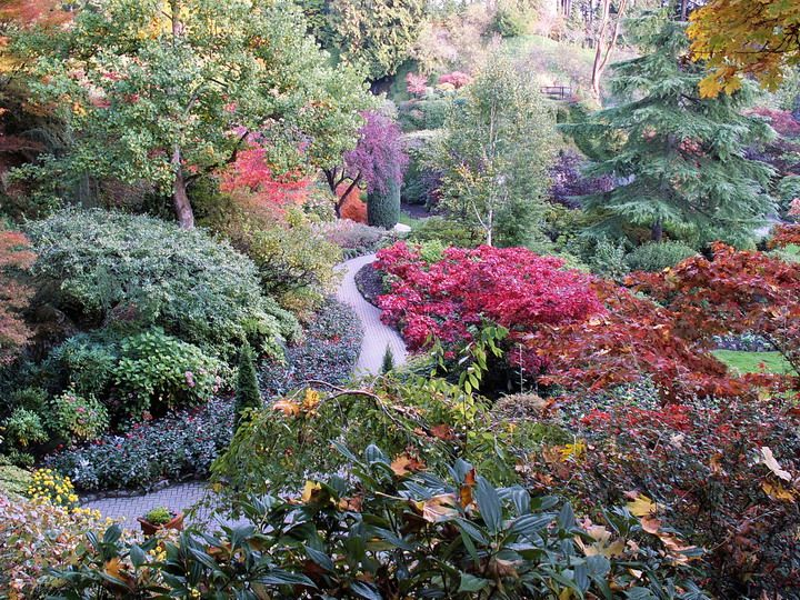 Garden Design Victoria Bc 187 best butchart gardens images on pinterest | beautiful places