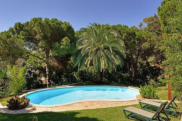 Awesome pool surrounded by palm trees in Albufeira, Portugal