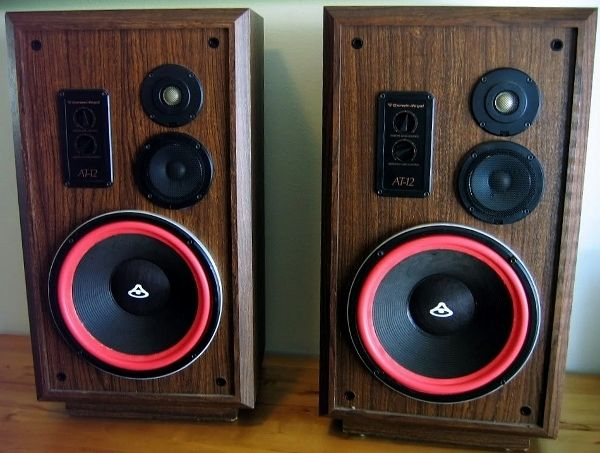 "Cerwin Vega AT-12 Speakers. Serious audiophiles may turn up their collective nose, but I am obsessed with the ""D"" and ""AT"" series CVs."