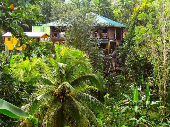 The Rasta way of life shines at this comfortable retreat in the green hills above Negril.  The Destination Natural life with colorful foods, warm sun, and plenty of time to smell the tropical flowers: Jamai...