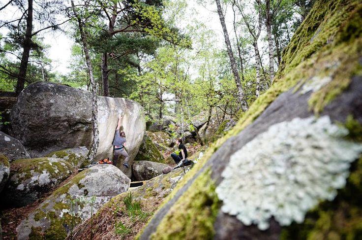 Apremont - Fontainebleau  @noah.gr . #fsthltn #bouldering #fontainebleau