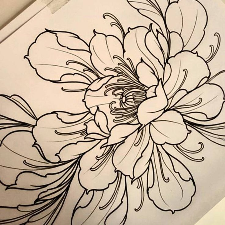 43 Japanese Peony Tattoos Collection: 20 Best Images About Pioni On Pinterest