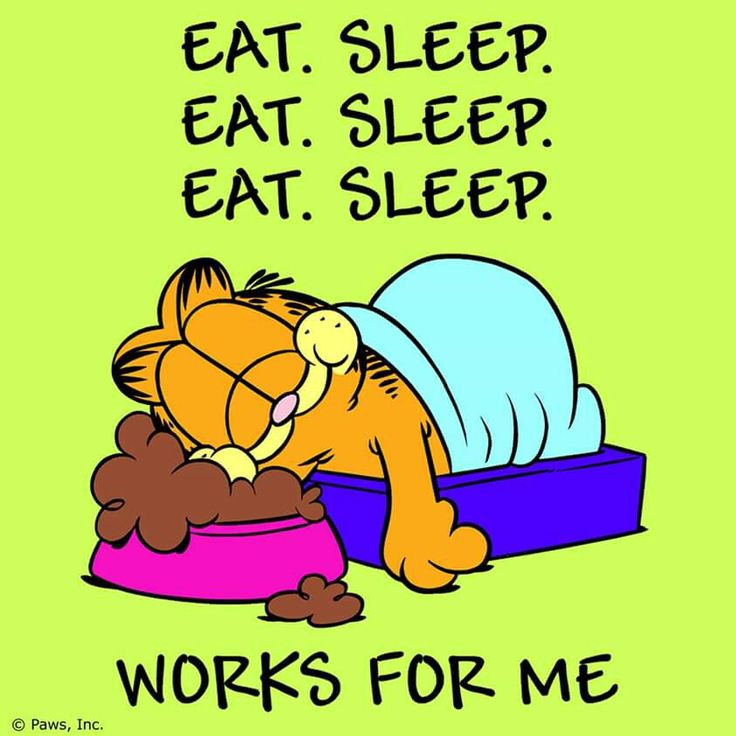 Pin by Thel Dor on Quotes / Humorous Garfield quotes