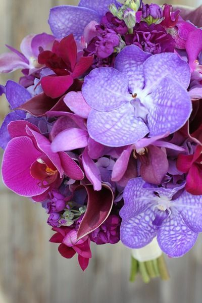 ber ideen zu orchideen brautstr u e auf pinterest. Black Bedroom Furniture Sets. Home Design Ideas