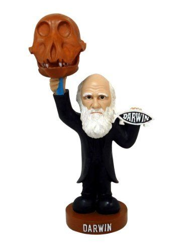 "Oddbobbles Charles Darwin Bobblehead Statue by Oddbobbles. $15.99. Approx 7"" in height. High quality poly resin statue. Bobbling Darwin Skull. Charles Darwin Oddbobbles. Welcome to Oddbobbles. Oddbobbles are a fantastic new line of bobblehead type statues. These statues are high quality resin works of art, not cheap plastic bobbleheads. What makes an Oddbobbles? An Oddbobble, unlike a bobblehead, actually doesnt have a bobbling head, it has a bobbling item in the f..."
