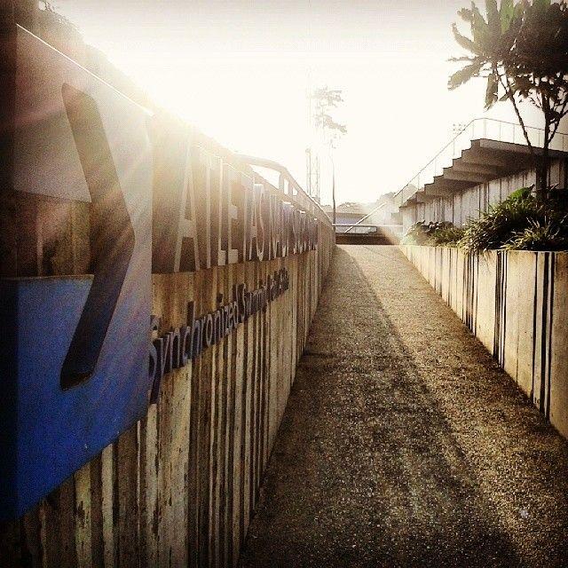 Here comes the sun #natación #deporte #sol #entrenamiento #sol #swimming #sun #combomadrugador