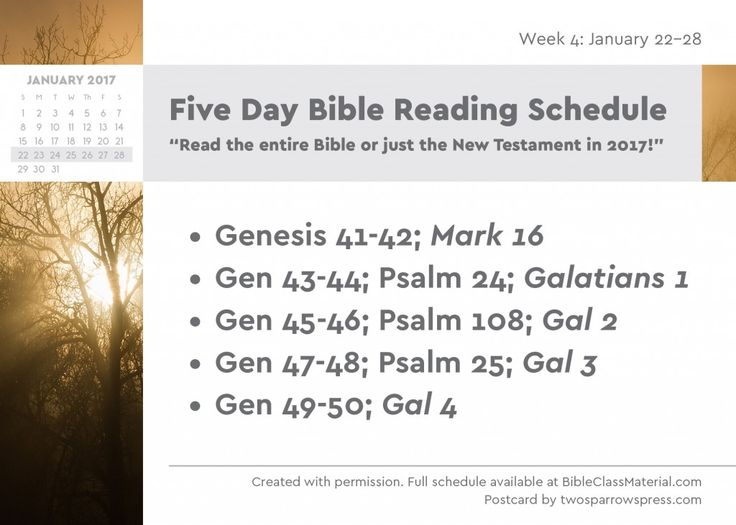 1000+ ideas about Bible Reading Schedule on Pinterest ...
