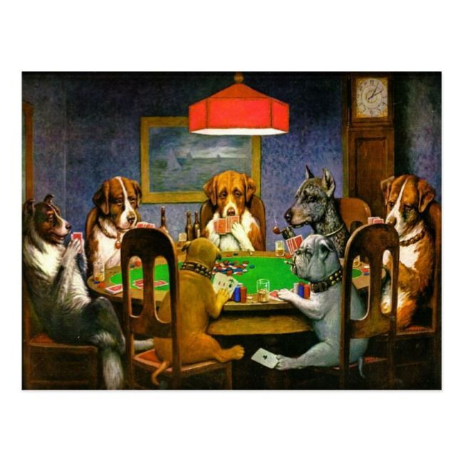 Funny Vintage Dogs Playing Poker Postcard Zazzle Com Dogs