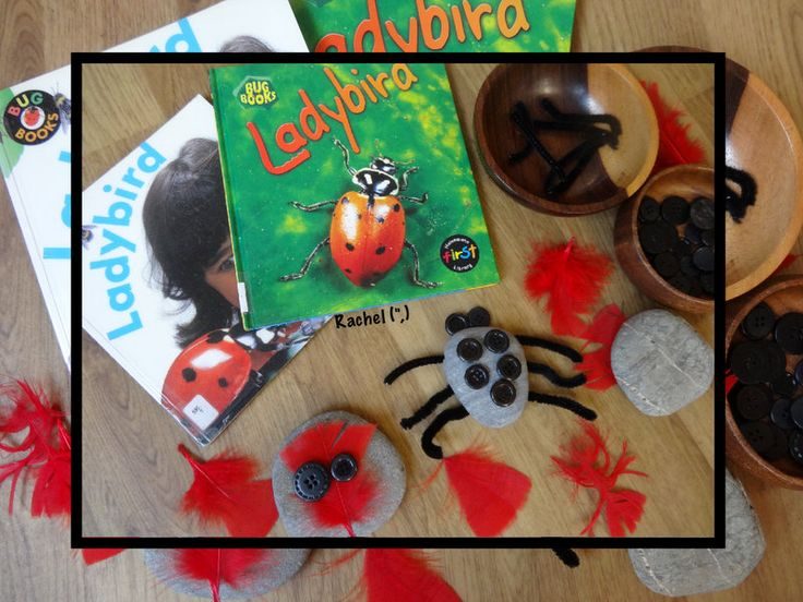 """Creating ladybirds and other creatures with loose parts - from Rachel ("""",)"""