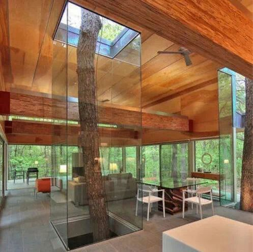 Living and nature room