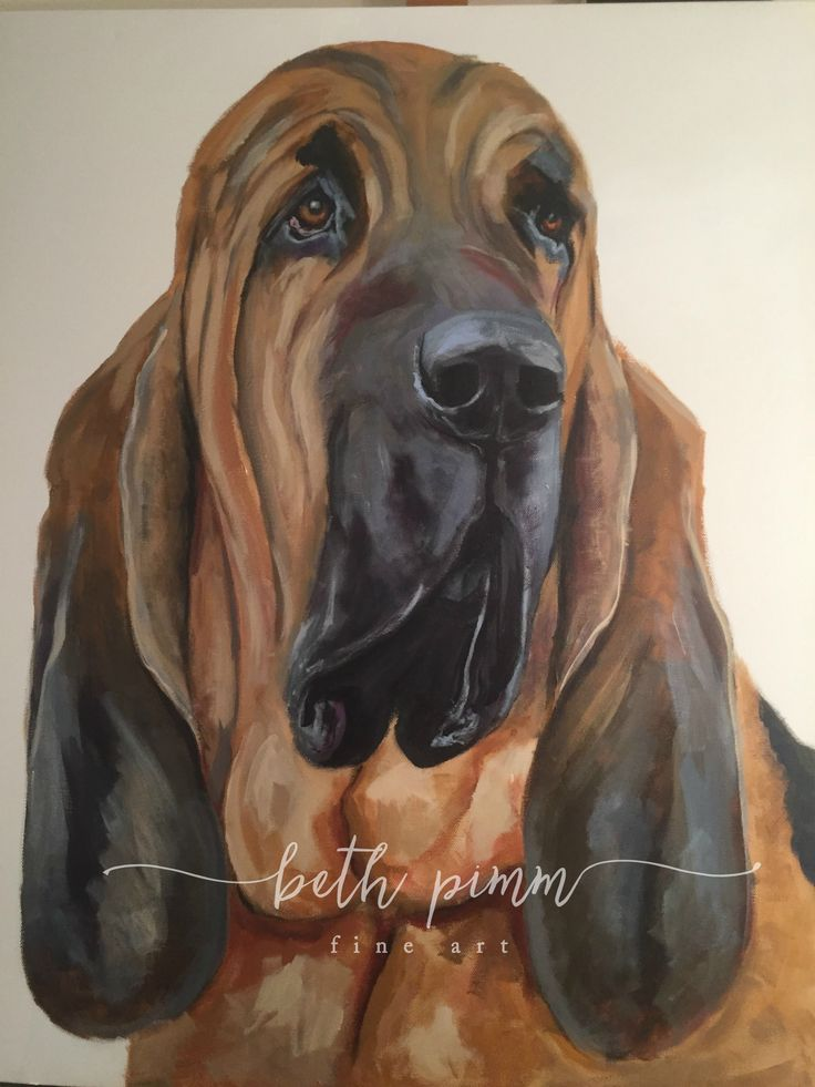 """Ralph""  Another BIG canvas for a BIG dog.  24x36 inches.  Contact me for commissions at www.bethpimmfineart.com"