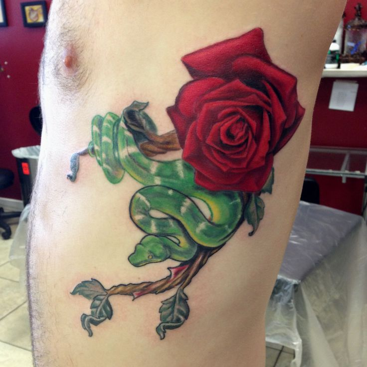 Snake and rose tattoo by Mike Ashworth | Tattoos by Mike ...