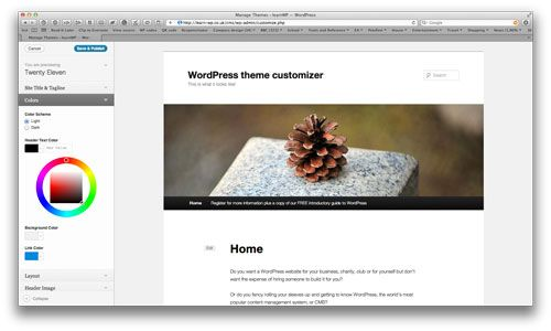 A Guide To The Options For WordPress Theme Development