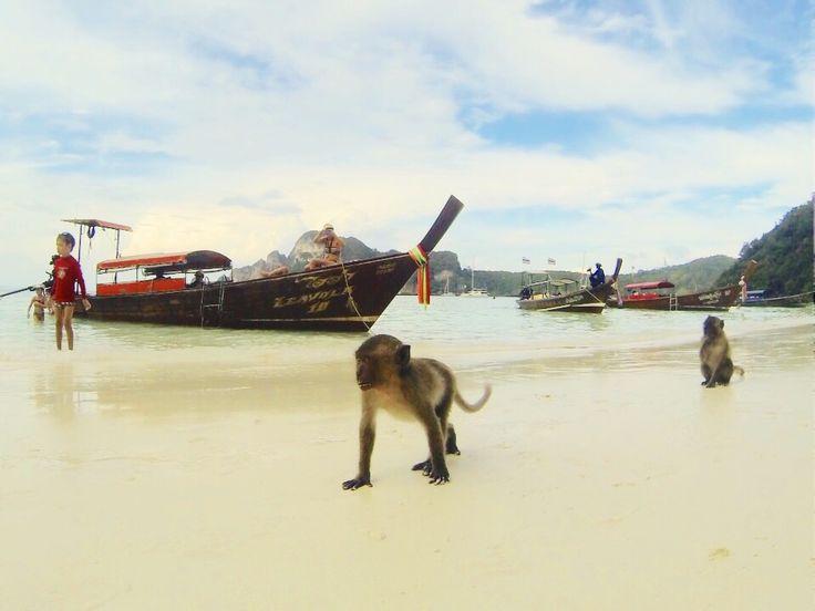 Monkey Beach, Phi Phi Don, Thailand. The Roads I Travelled || theroadsitravelled.com