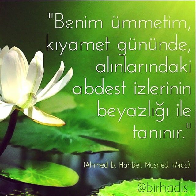 Hz. Muhammed (sav) ❤ @birhadis Instagram photos | Websta (Webstagram)