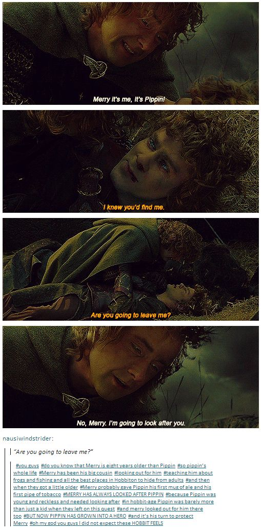 """No, Merry, I'm going to look after you.""  For Pippin's whole life, Merry has been his big cousin, looking out for him, teaching him about frogs and fishing and all the best places in Hobbiton to hide. MERRY HAS ALWAYS LOOKED AFTER PIPPIN because Pippin was young and reckless and needed looking after. In hobbit-age Pippin was barely more than just a kid when they left on this quest, and merry looked out for him there too. BUT NOW PIPPIN HAS GROWN INTO A HERO and it's his turn to protect…"