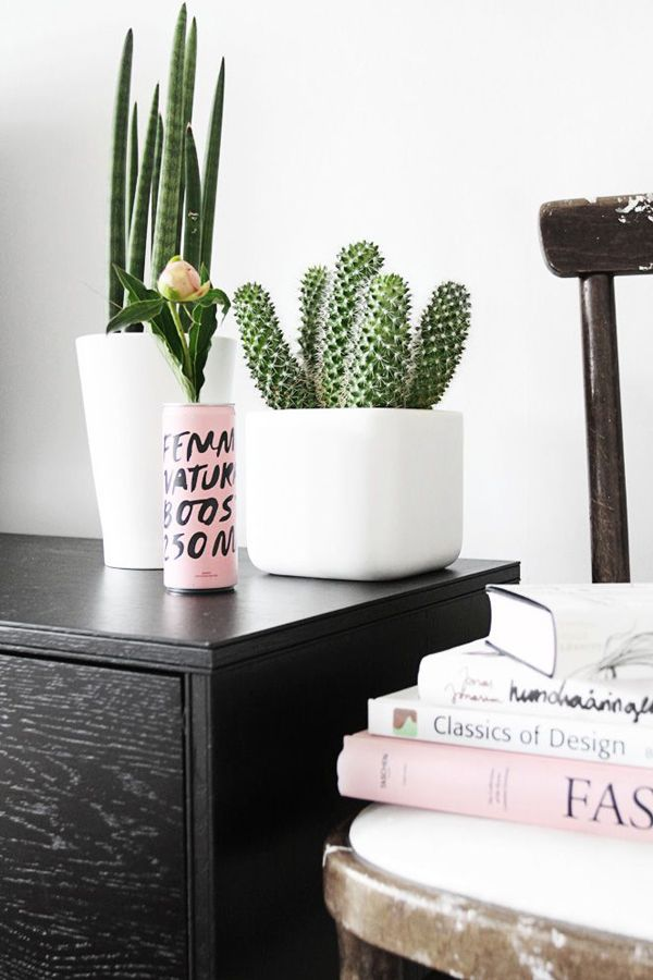Custom Engraved Signs for Plants that Match the Beauty of These 17 Indoor Cactus Gardens. http://www.kincaidplantmarkers.com/