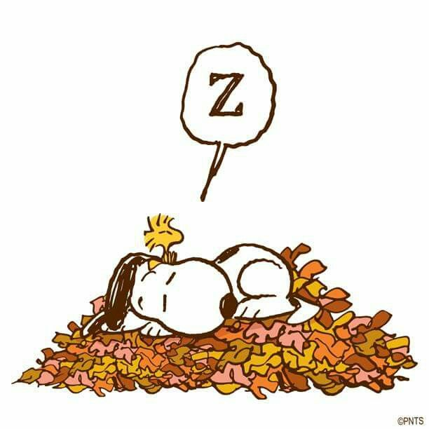 Snoopy and Woodstock napping on the New Fall Leaves🐾❤️