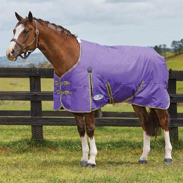 Weatherbeeta Comfitec Clic Horse