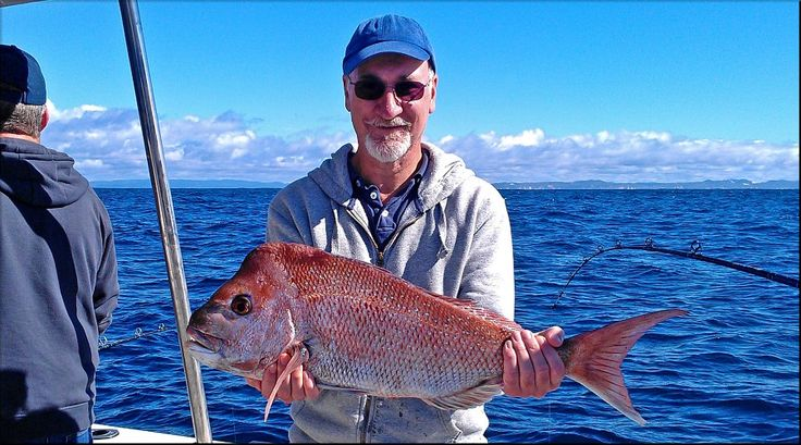 Fishing Noosa with Couger One - Snapper