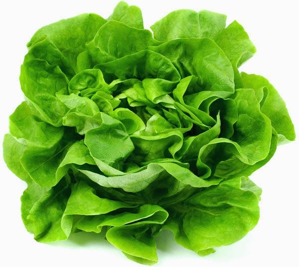 Jana Kozakova: Úloha listové zeleniny v našem jídelníčku