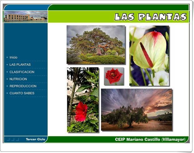 """""""Las plantas"""" (Aplicación interactiva de Ciencias Naturales de Primaria)"""