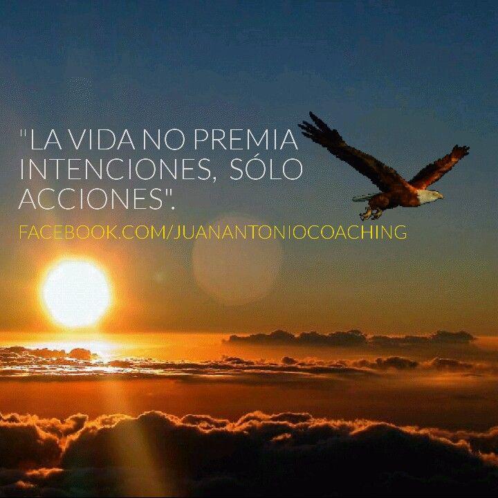 No bastan solo las buenas intenciones, debes tomar acción sea cual sea la actividad que desempeñes en la vida.