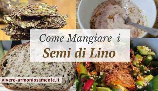 Come mangiare i semi di lino? Usare i semi di lino in cucina è semplice. Si possono assumere nel latte, nello yogurt, fare il pane o sostituire le uova.