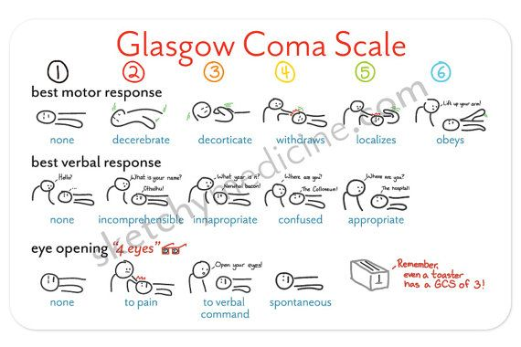Glasgow Coma Scale Pocket Card by SketchyMedicine on Etsy