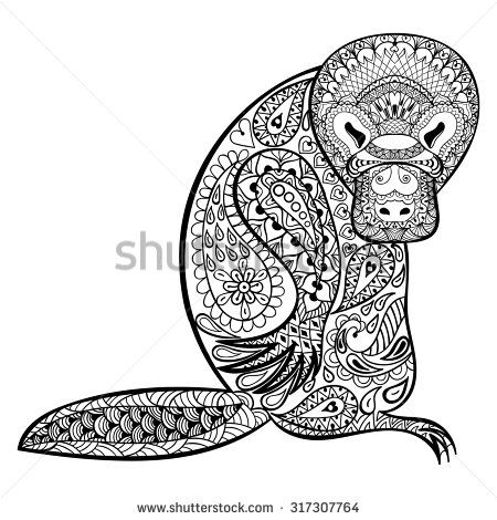 Zentangle stylized Platypus totem. Can be used for adult anti stress Coloring Page for art therapy, tribal illustration in doodle style. Vector sketch with high details isolated on white background.