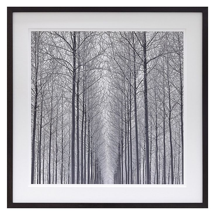 Buy doug chinnery equilibrum framed print 79 x 79cm john lewis