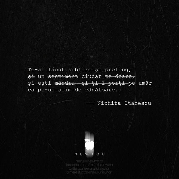 --------------- poetul şi dragostea.