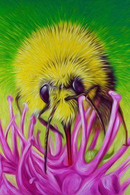 Bee and Flower Nectar by simon-knott-fine-artist at zippi.co.uk