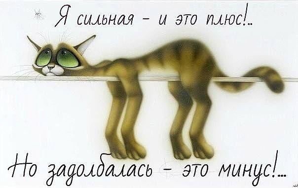 Стекло-фьюзинг Лилия : разное......