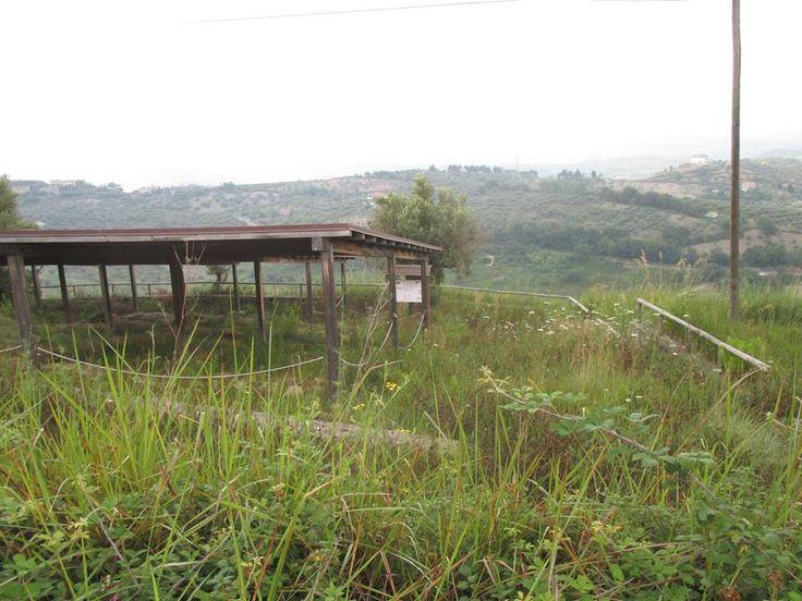 Il Blog di #BrunoPino: Serra D'Aiello (Cs). Museo di #Temesa chiuso, e parco archeologico pieno di erbacce