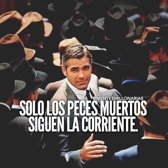 #lavidaesbella #armonia #consejos #citas #logros #mentepositiva #actitudpositiva #crecer #sabiduria #oracion #enfoque
