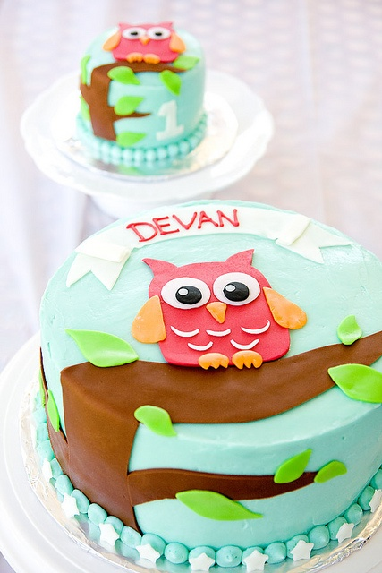 Owl cake from six one seven for her son's first birthday.